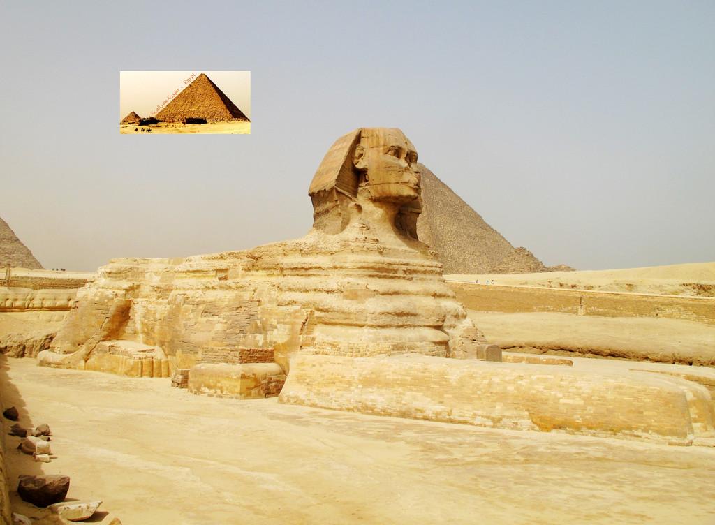 古埃及人崇拜狮子,把狮子看做力量的象征图片