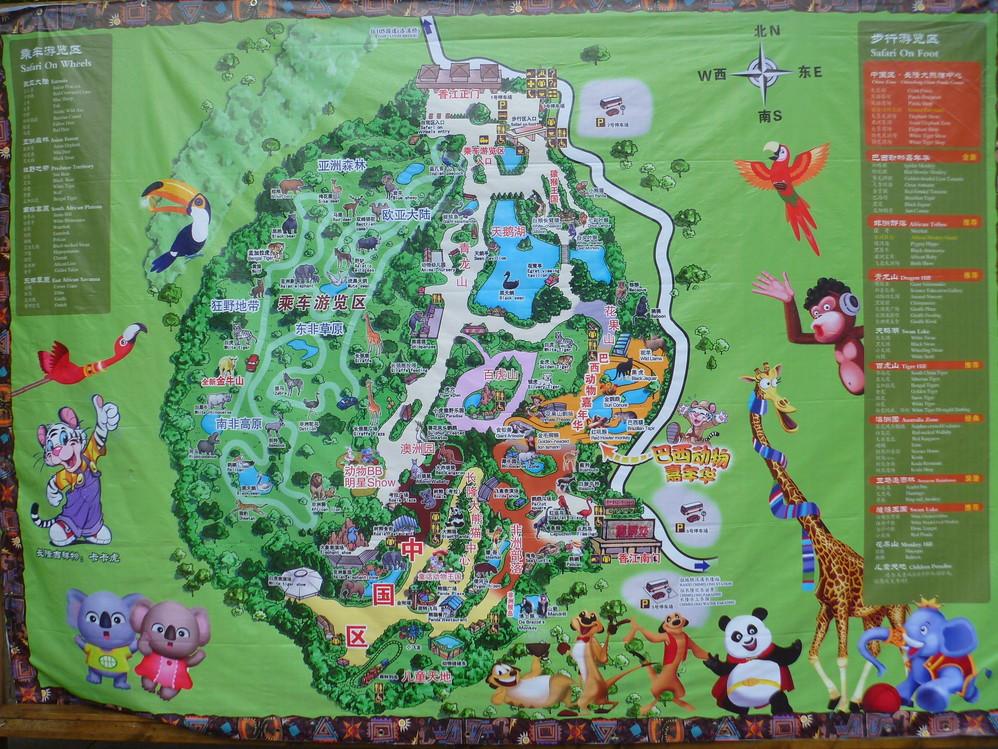 带娃疯玩【广州长隆野生动物园】