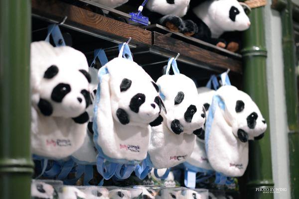 暑期狂欢季#探访长隆野生动物世界