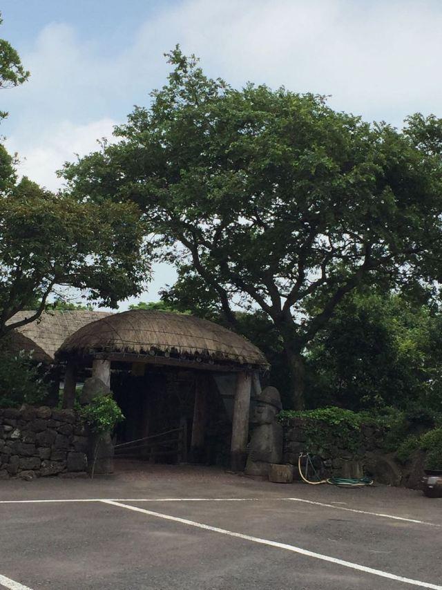评为济州十景之一的优美风光,即便在半山腰依旧能望到灵室奇岩,松树