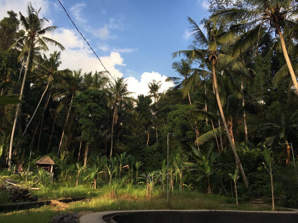 bali island ---巴厘岛