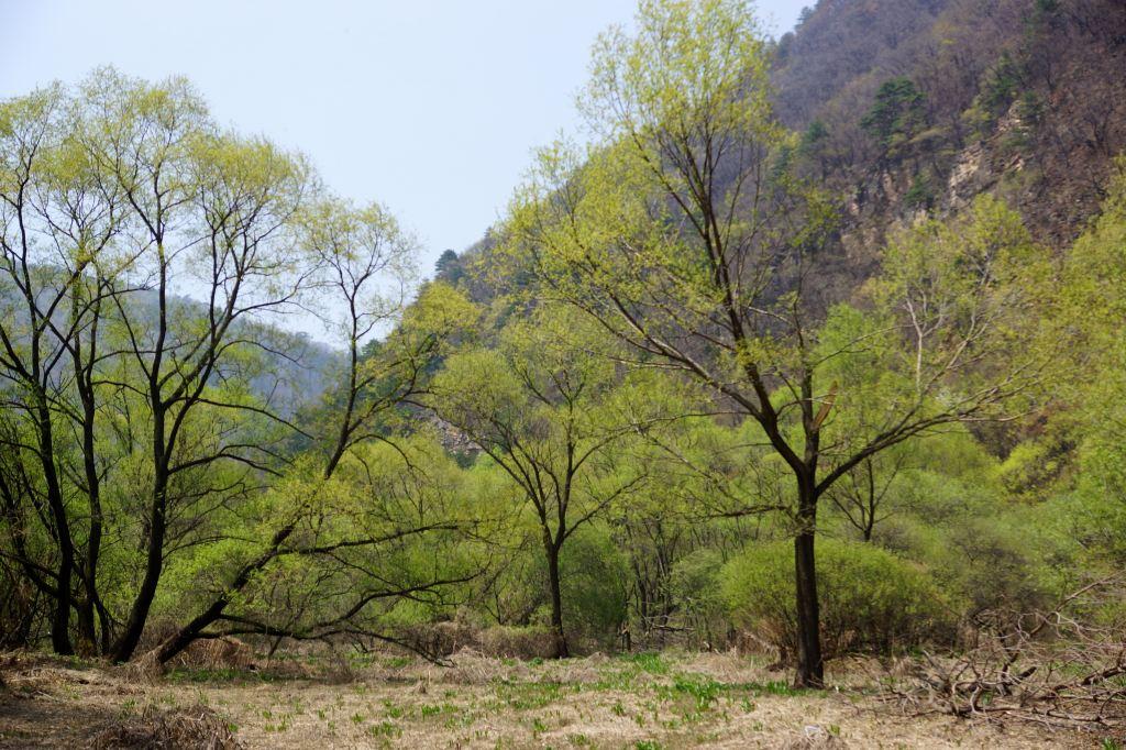 """灵空山风景区地貌特点形似一个硕大的蘑菇状,中间由三条峡谷交汇,呈"""""""