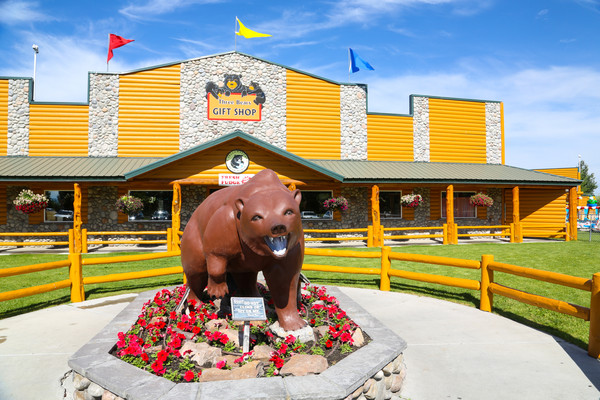 公园供游客观赏的稀有动物有灰熊