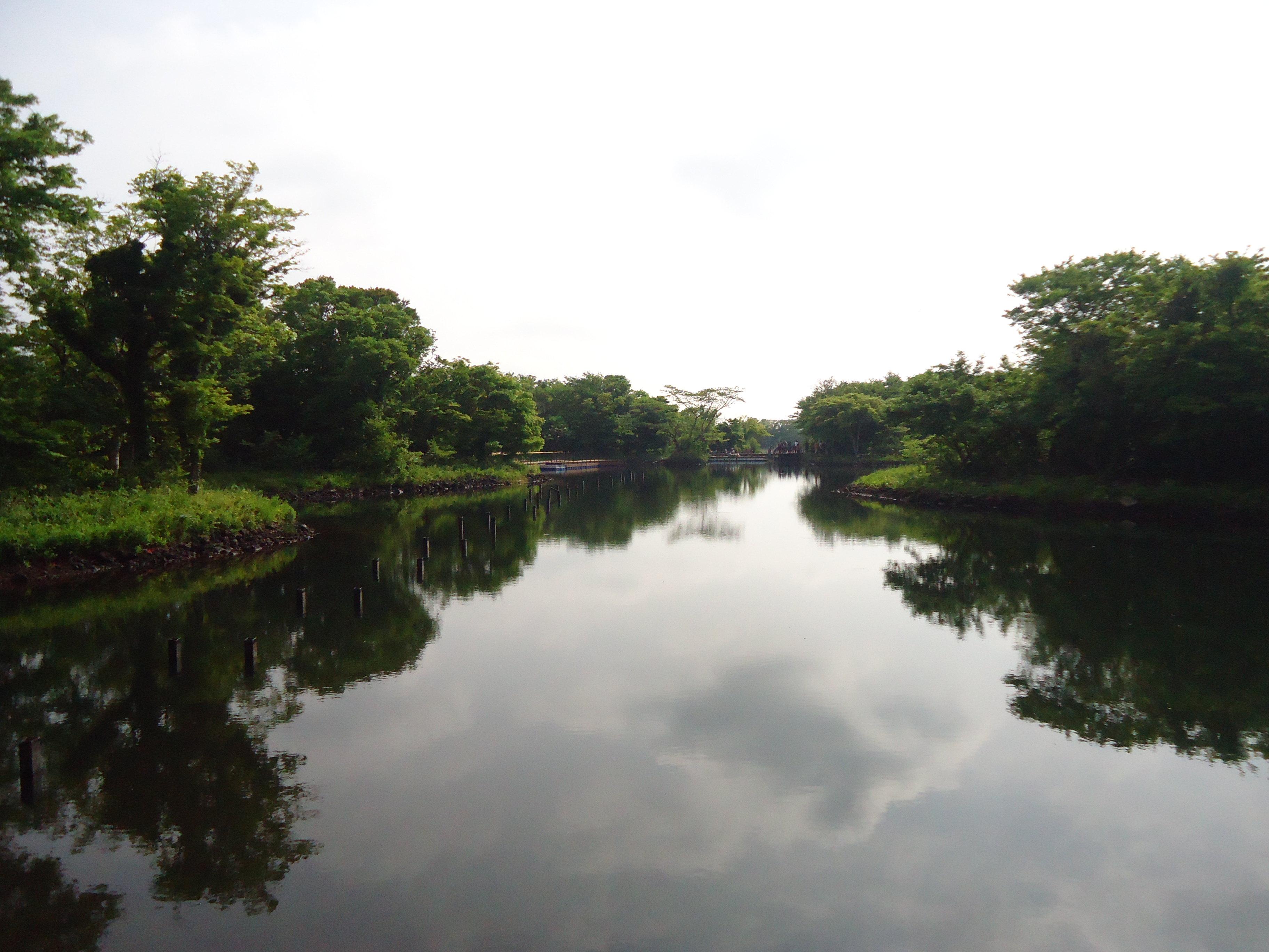 济州岛ecoland主题公园是岛上唯一一个可以体验英式森林小火车的景区