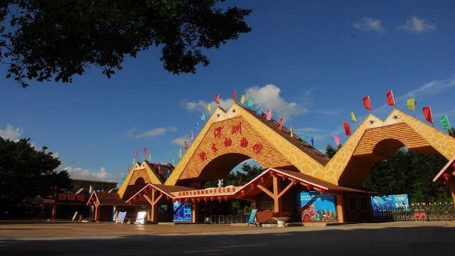 【携程攻略】深圳深圳野生动物园欢乐一日游(深圳