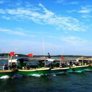 东海岛 3.9分 鑫沙海滩度假村