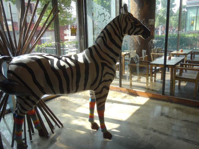 上海滩动物咖啡馆-zoo