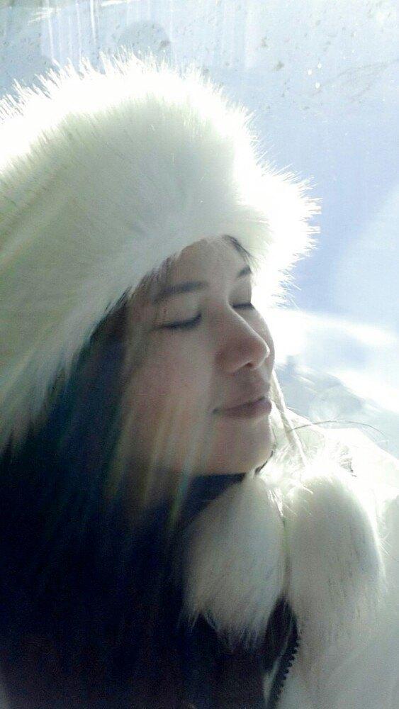 哈尔滨降雪动物怎么活动