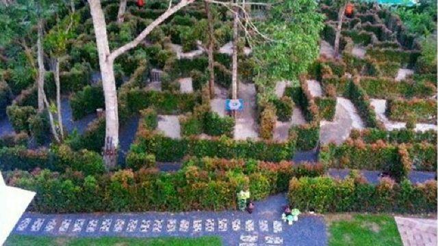 这个迷宫花园面积约1千平方米,有七个出口,每个出口连接着不同的轨道.