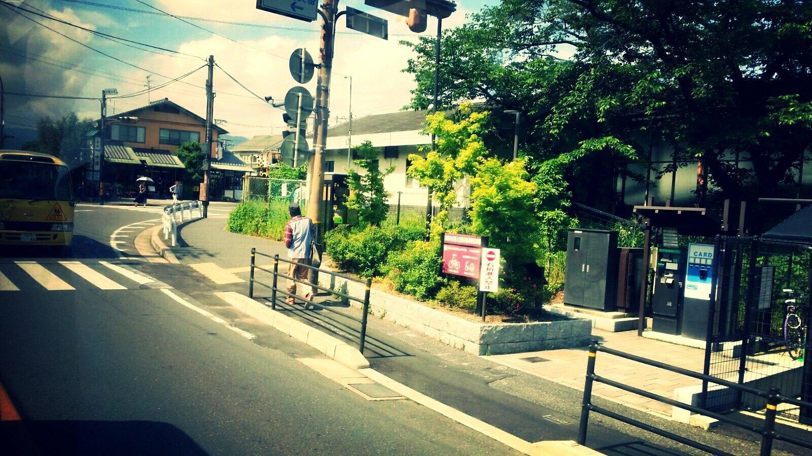 路边小风景.民宅与园艺