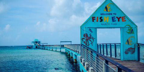 魚眼海洋公園