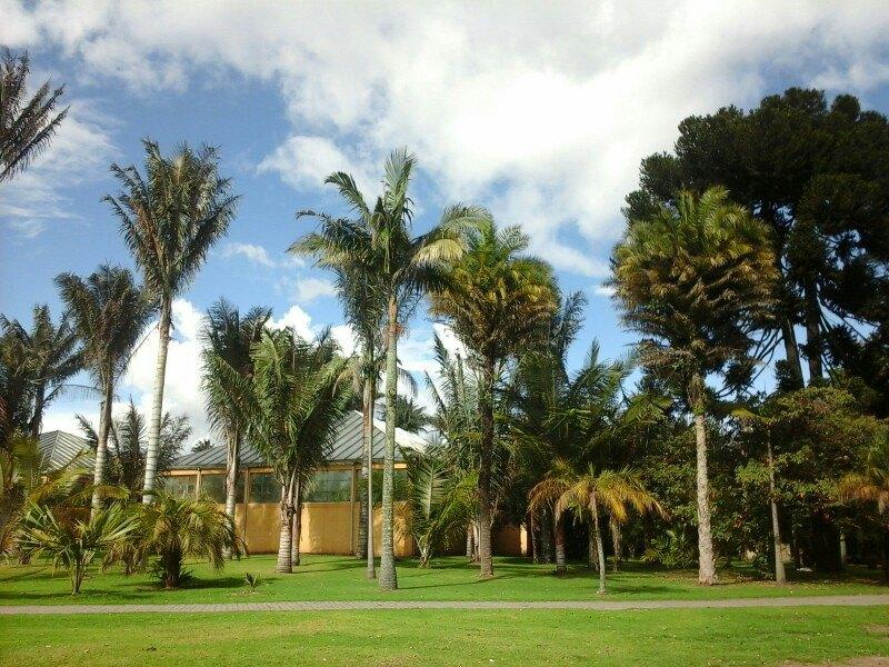Botanico Jose Celestino Mutis植物园  Jardin Botanico Jose Celestino Mutis   -3