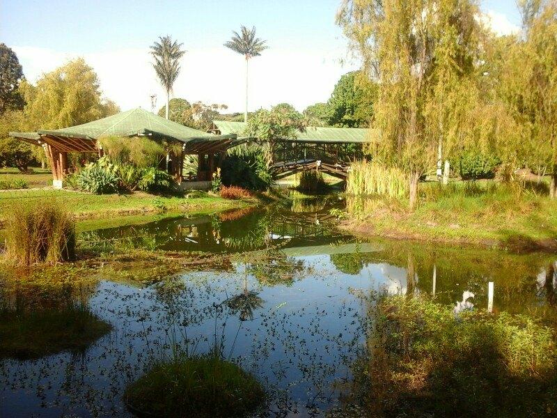 Botanico Jose Celestino Mutis植物园  Jardin Botanico Jose Celestino Mutis   -0