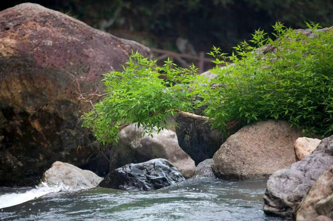 景区隶属南山风景名胜区的东片景区