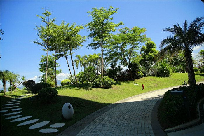 海南省旅游 三亚旅游攻略 #花样游记大赛#新婚之旅,凤凰岛,亚龙湾