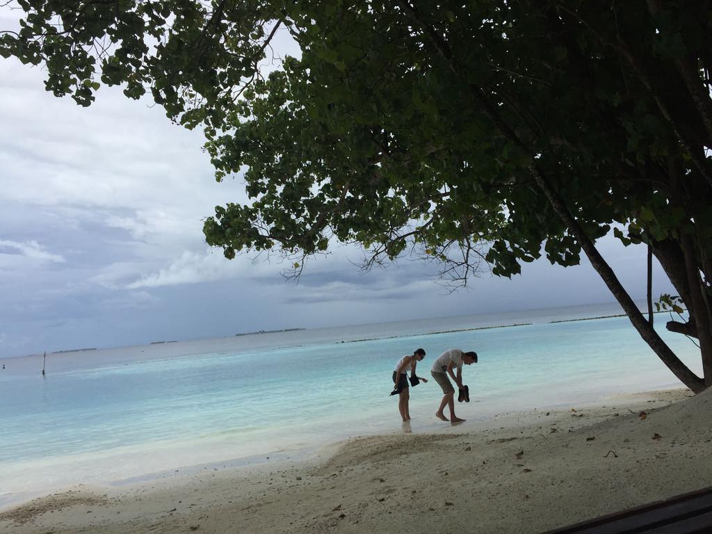 海边漫步捡贝壳的外国情侣