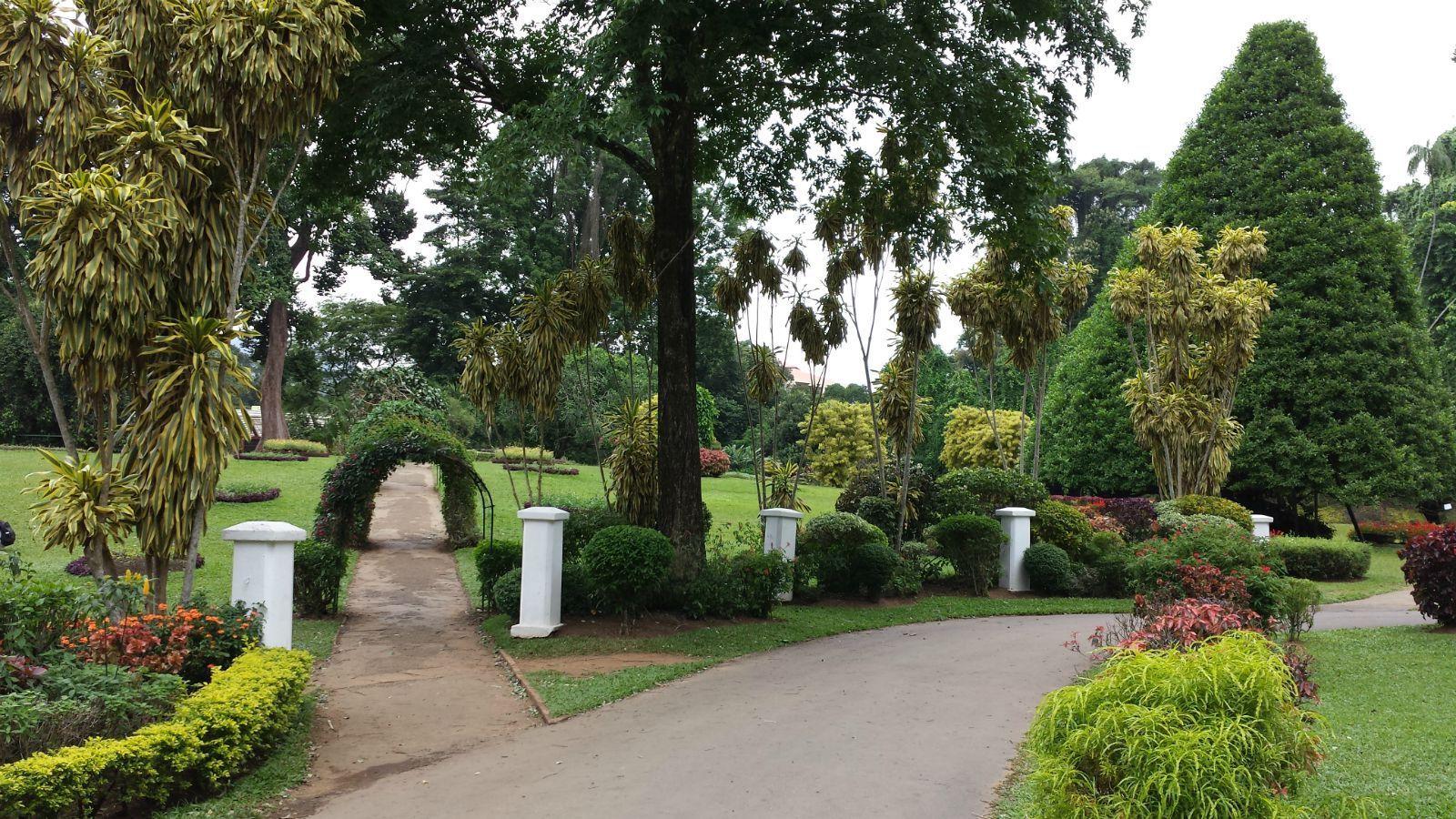 著名景点有康提湖,佩拉尼亚皇家植物园及佛牙寺 康提 位于康提的佛牙