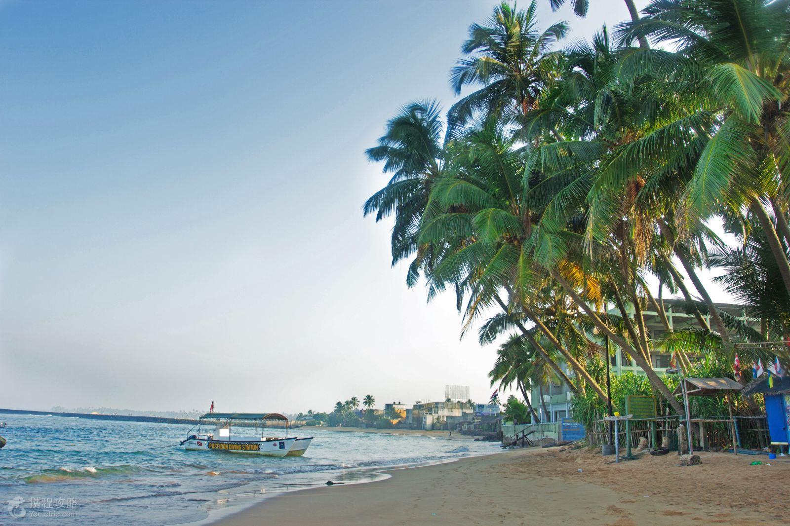 斯里兰卡7日5晚跟团游·红树林游船 海上火车 海滨2晚