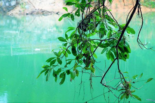 竹林深处的千泷沟瀑布图片