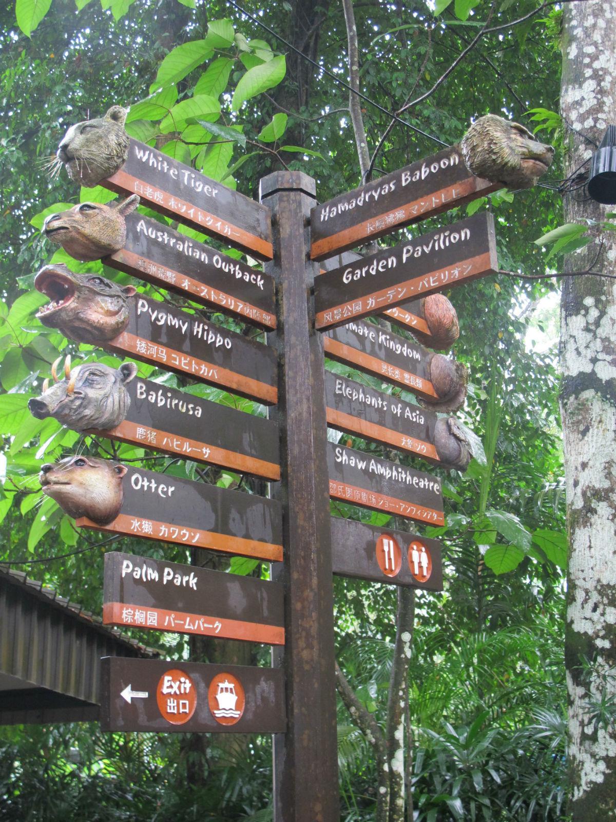 动物都躲起来了~~t t 动物园,新加坡