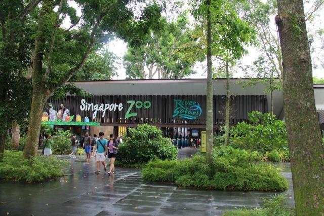 新加坡动物园 新加坡动物园
