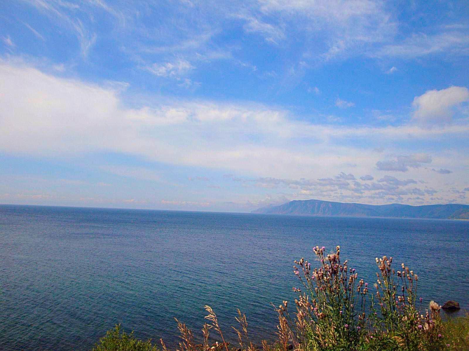贝加尔湖畔口风琴谱子分享展示