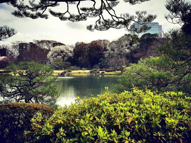 日式风景gif