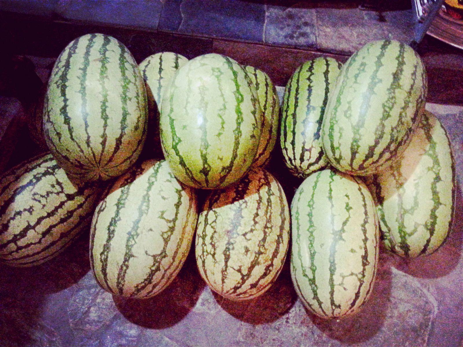 超级好吃的大西瓜