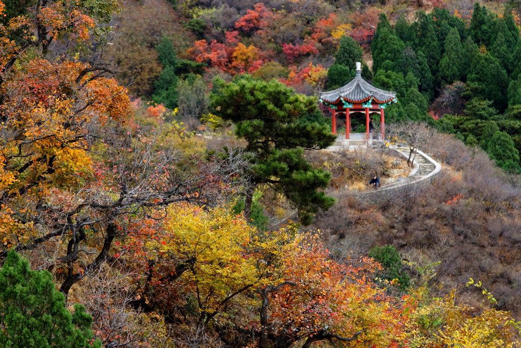 香山公园    -1