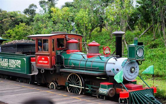 英式森林小火车体验