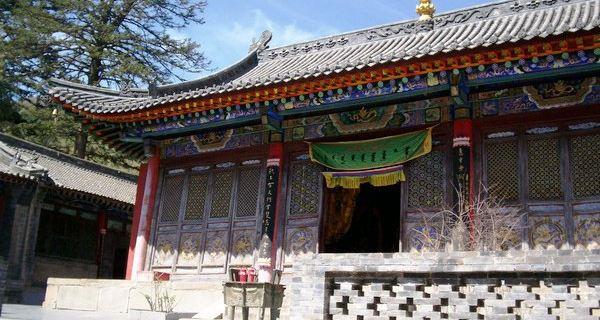 10上海野生动物园