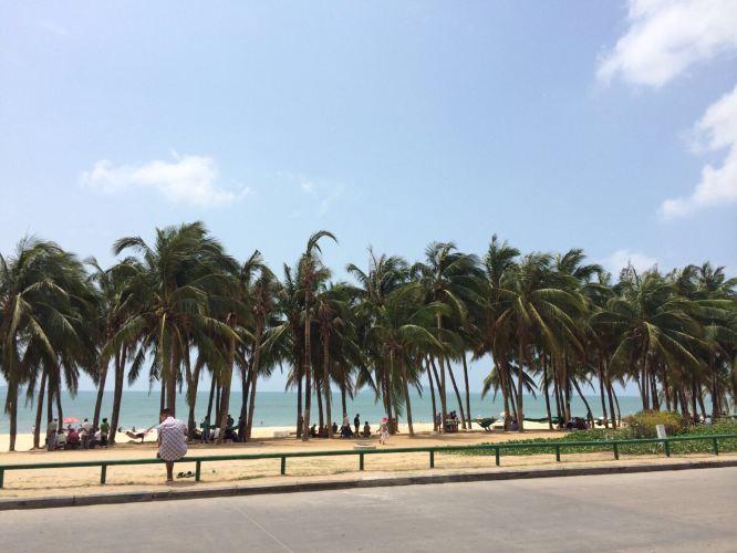 爱死蓝天白云海水沙滩椰子树