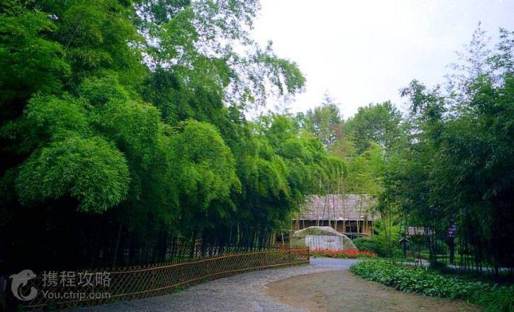 《卧虎藏龙》,《像雾像雨又像风》外景拍摄地中国大竹海;钟鼓悠扬的千