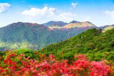 绿林山-荆门