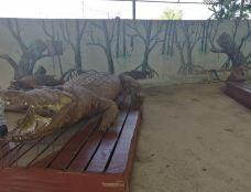 北榄鳄鱼湖动物园-Thai Ban-q****ky