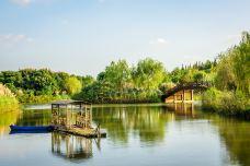 南湖湿地公园-呼和浩特