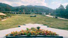 百花箐山谷景区-嵩明-C年度签约摄影师