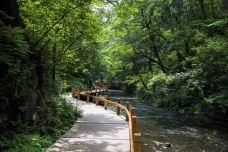 吉林龙湾群国家森林公园-辉南-gz当地向导伊妹儿