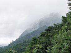 美庐-庐山风景区-M59****009