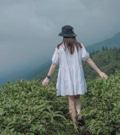 四川游记图文-蒙顶山|距成都仅一个半小时的避暑圣地,给你一个23℃的夏天!