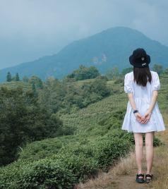 雅安游记图文-避暑蒙顶山,四川境内休闲纳凉的度假好去处!