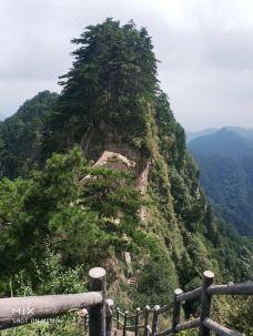 宝天曼生态旅游区-南阳-wwwfff123