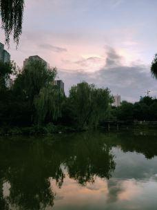 小西湖-兰州-_U2****0235