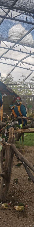 台州湾野生动物园-台州