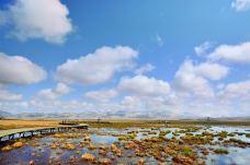 若尔盖花湖生态旅游区-若尔盖-克克克里斯