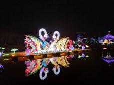 2018幸福谷第二届迎春花灯会-资阳-Yuaaa