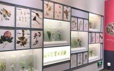 北京自然博物馆-北京-吴立珍