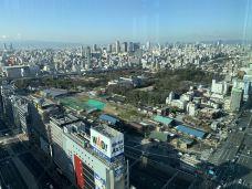 天王寺动物园-大阪-WillSum