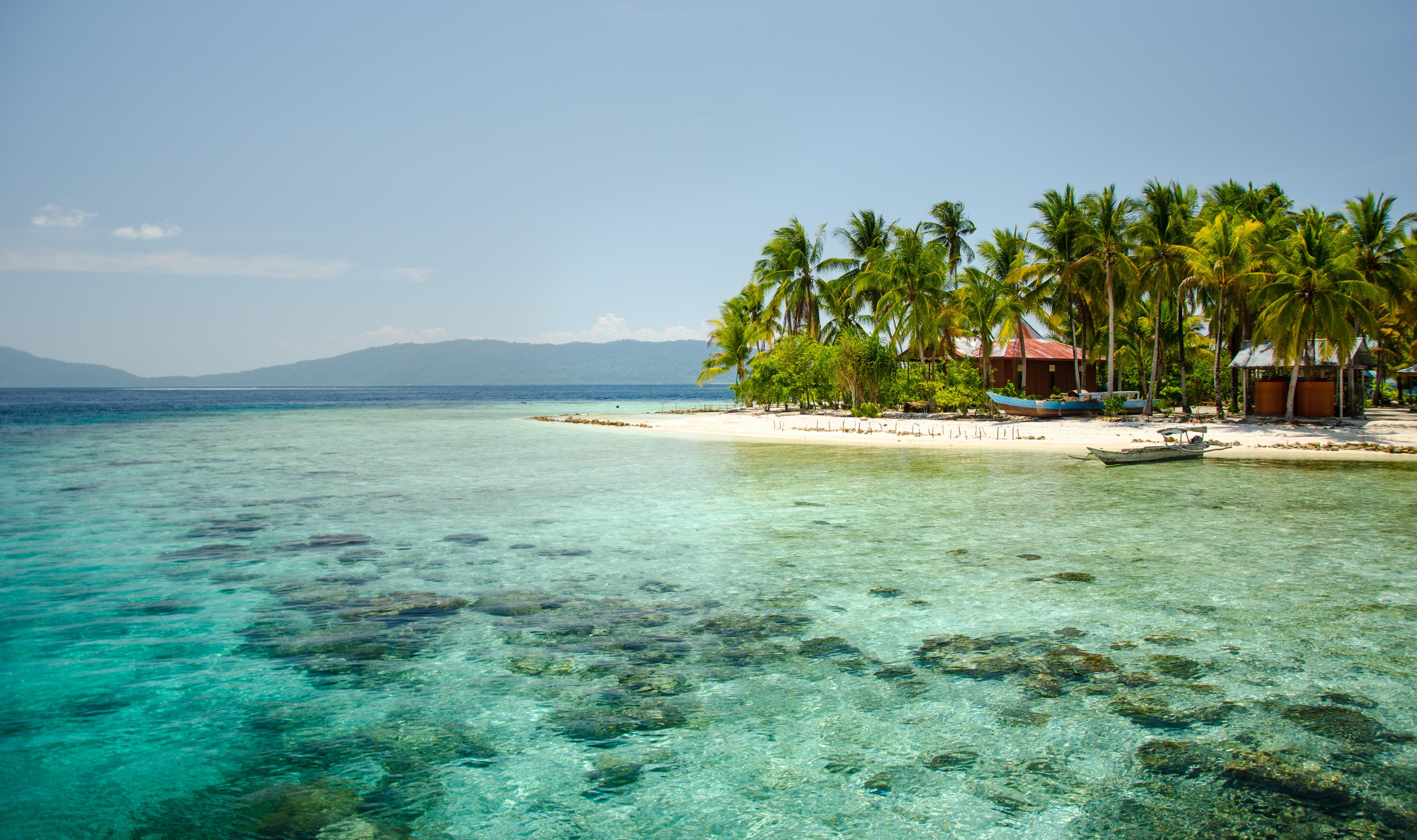 珊瑚島  Coral Island   -0