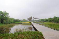 弥河湿地水上乐园-青州-M25****2405